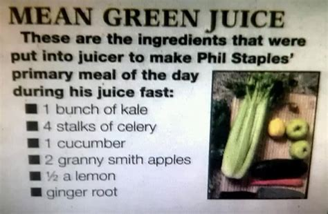 Juicing Detox Sick And Nearly Dead by Green Juice Meal Replacer By Phil Staples Of