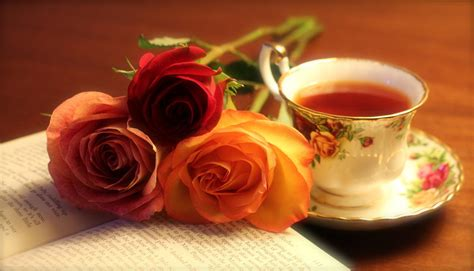 the roses books tea book by josephtimbury on deviantart