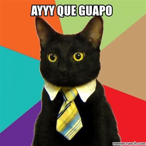 Gato Meme - gato con traje