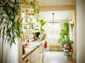 decorar cocinas  plantas cocina  reposteros