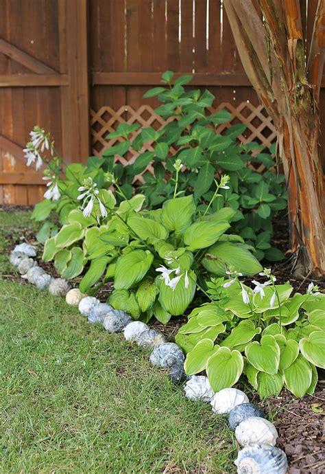 garden borders and edging