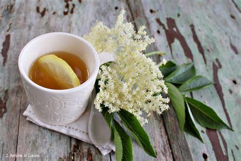 fiori di sambuco tisana tozzetti e infuso ai fiori di sambuco 2 amiche in cucina
