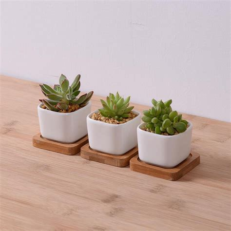 small pot plants garden supplies white creamic flower pot with bamboo tray
