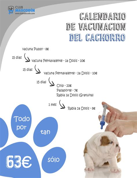 Calendario De Cachorro Club Mascod 237 N Calendario De Vacunaci 243 N Cachorro