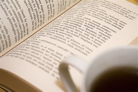 Letter Reading free stock photo of book learning letters