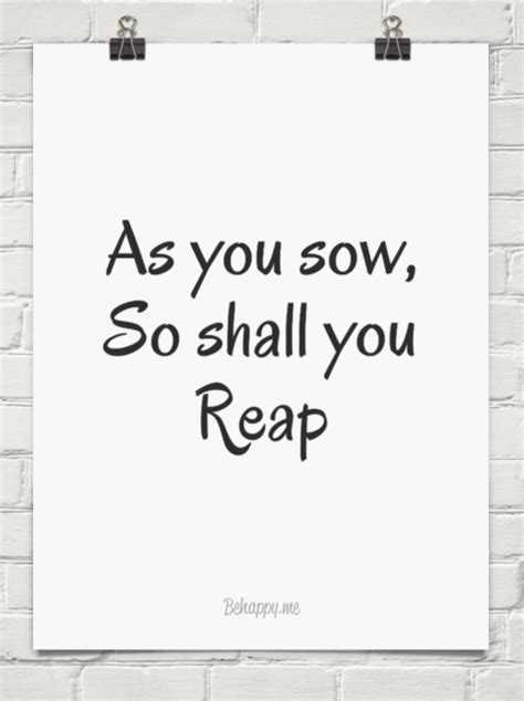 You Reap What You Sow Essay as you sow so shall you reap essay