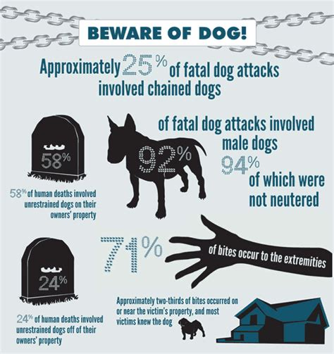 attack statistics by breed bite statistics by breed uk breeds picture