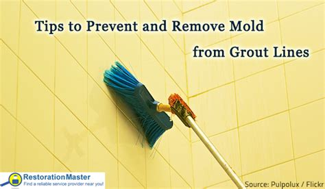 Remove Mold From Bathroom Grout by Tips To Prevent And Remove Mold From Grout Lines