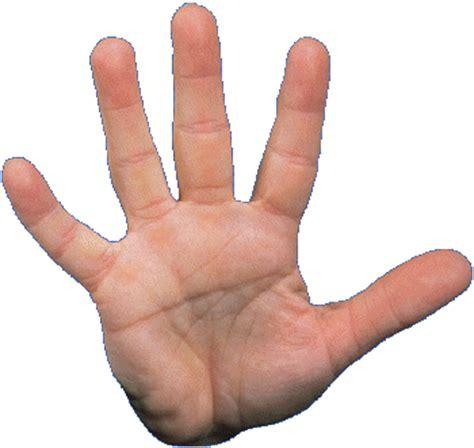 imagenes de ok con la mano lesiones de mano que te lastimes es inevitable el dolor