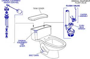 Old Faucet Repair Parts American Standard 2055 11 Toilet Parts