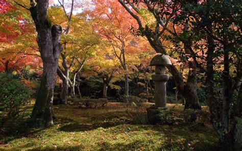 black falls in with gardener jeffrey friedl s 187 kyoto fall foliage desktops