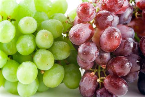 imagenes de los uvas kangris propiedades de las uvas