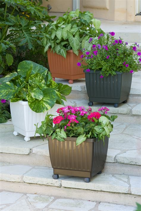 Flower Planters by Terra Cotta Flower Pots