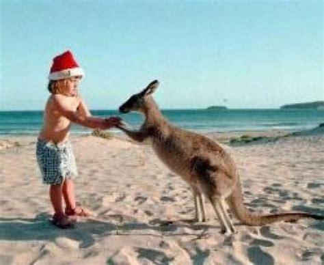christmas in australia holidappy