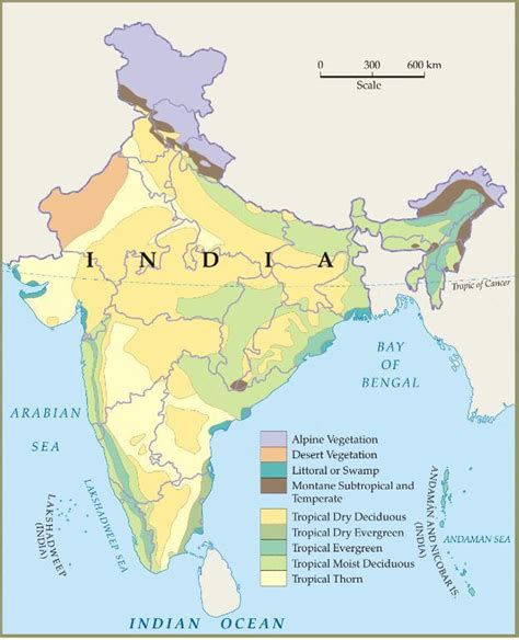 pattern of agriculture and types of forest in bangladesh vegetation of india geography upscfever