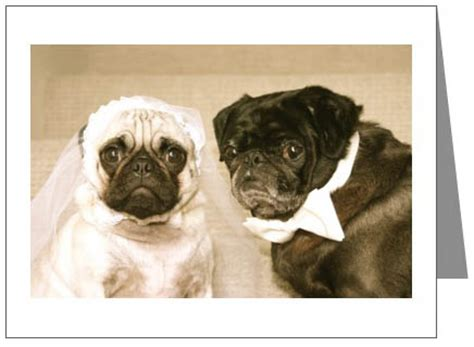 pug wedding card pugs dogbreed gifts pug greeting cards notecards