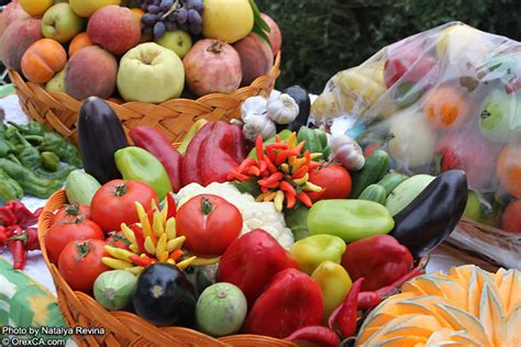 uzbek fruit and vegetables bazaars in uzbekistan the uzbekistan pictures uzbek fruit and vegetables