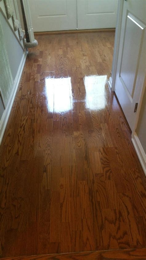 floor cleaning panies knoxville tn carpet vidalondon