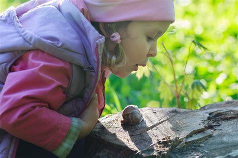 cuisiner des escargots comment cuisiner des escargots ohhkitchen com