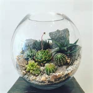 crystal desert world terrarium small bioattic