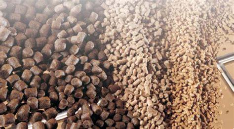 Pakan Udang Bermutu rumah hijau organik analisa usaha pembuatan pakan ternak