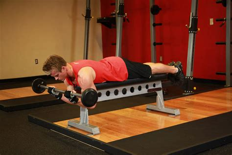 high bench two dumbbell rowing lying high bench barbell curl exercise guide and video