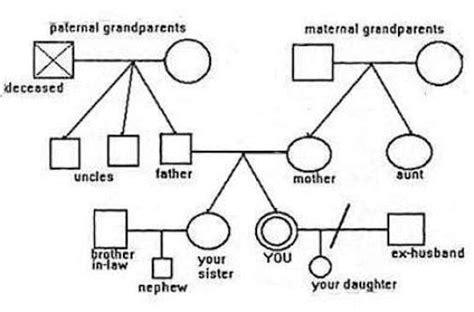 6 Genogram Templates Free Sle Templates Genogram Free