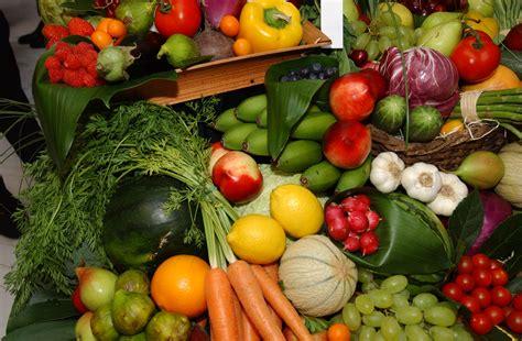 fruites y verdures im 225 genes de verduras y frutas imagui