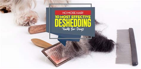 best deshedding tool top 10 best deshedding tool for dogs brands of 2018