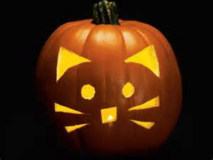 pumpkin carving patterns and ideas 6 cat themed jack o lantern ideas for you and your kids