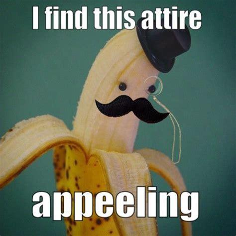 Cheesy Memes - cheesy puns that will make you facepalm boredbug