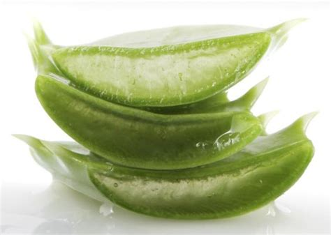 Aloe Vera Detox For Sick Eclectus by Aloe Juice Works To Improve Skin And Detox The