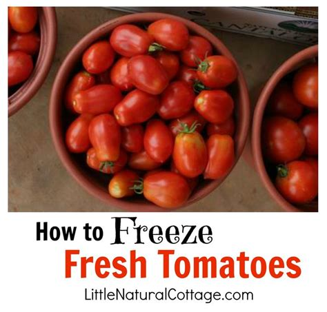 Freezing Tomatoes From The Garden by 17 Best Images About Freezing Goods On How To