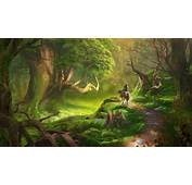 Link Video Games The Legend Of Zelda Forest Wallpapers