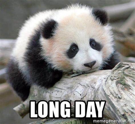 Long Ass Day Meme - long day sad panda meme generator