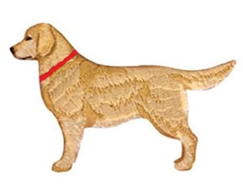 golden retriever embroidery golden retriever gifts golden retrievers on t shirts apparel clothing