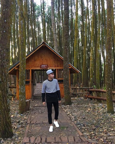 jalan menuju hutan pinus imogiri