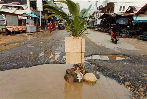 Keladi Tamiang pohon kelapa yang tiba tiba tumbuh di jalan raya jadi
