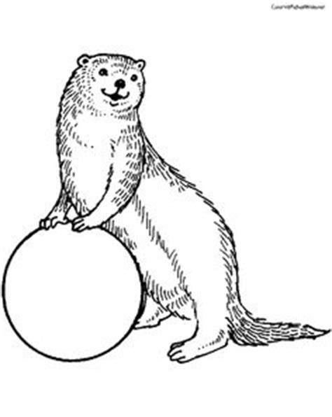 personality types otter golden retriever and beaver personality types otter golden retriever and beaver see more best ideas