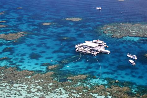 great barrier reef pontoon great barrier reef activity platform agincourt pontoon