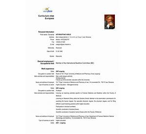 84 curriculum vitae completat free resume posting online cv templates and guidelines europass yelopaper Gallery