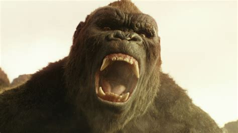 imagenes graciosas de king kong kong skull island giant ape looks like a god in