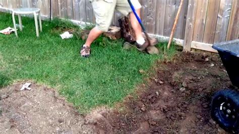 Grass Removal by How To Remove Sod By The Easy Way