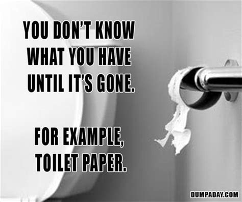 toilet paper funny 2 funny toilet paper pictures dump a day