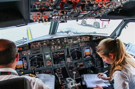 b737 max flight deck b737 800 mip image gallery flaps 2 approach