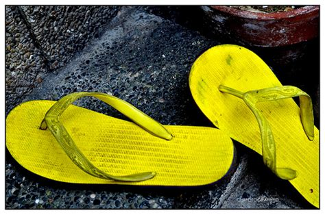 spartan slippers spartan slippers flickr photo