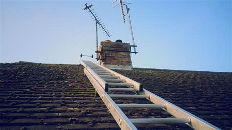 how much does guard cost bird guards chimney cowls bennetts chimney sweep