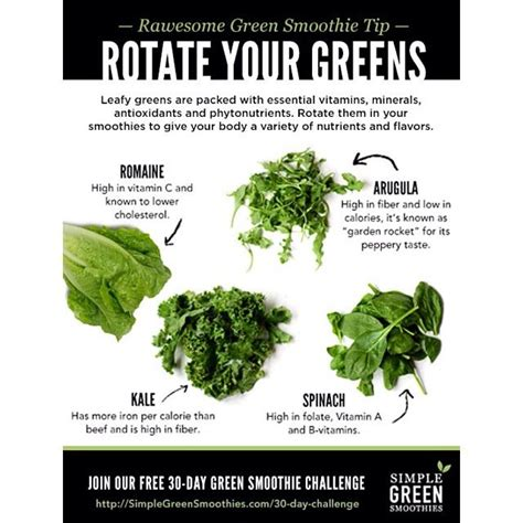 beginner s green smoothie 3 easy steps 1000 images about green smoothies and nutritious drinks