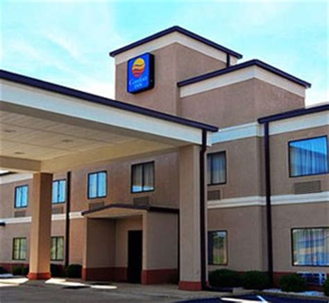 comfort inn and suites jackson tn jackson tn hotels