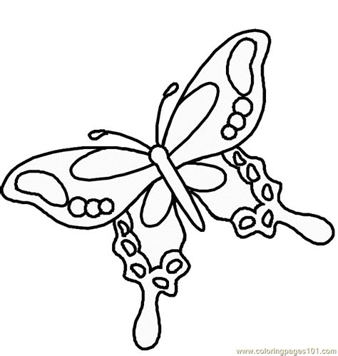 coloring pictures of small butterflies free coloring pages of tribal butterflies
